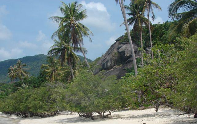 Zdjęcia: plaża, Koh Pangan, plaża, TAJLANDIA