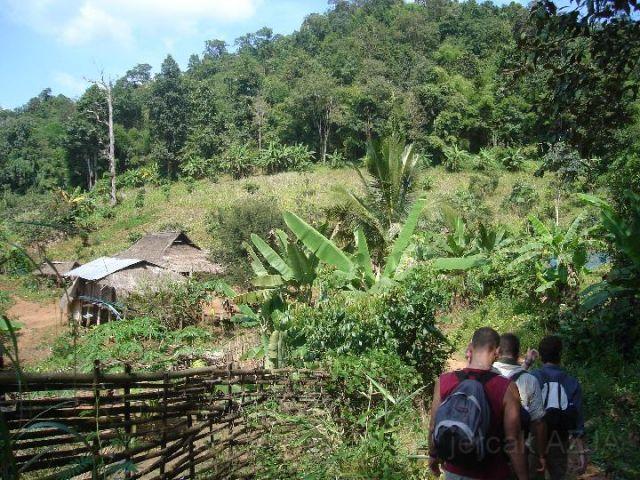 Zdj�cia: po�udniowo wschodnia czesc kraju , treking w okolicach chan mai, TAJLANDIA