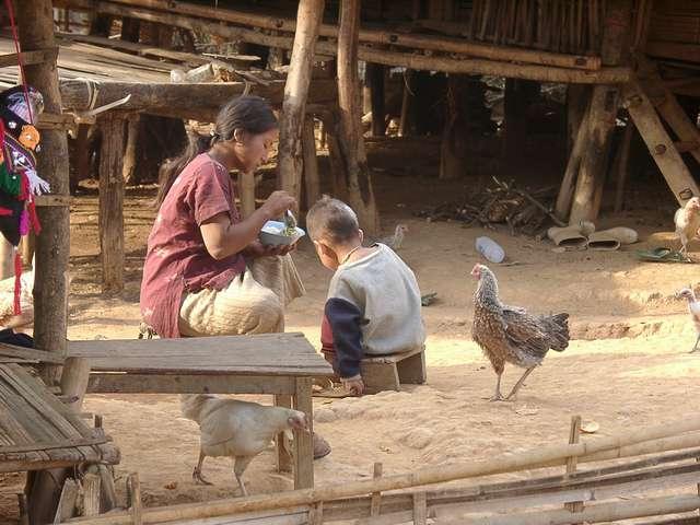 Zdjęcia: Płn. Tajlandia / pogranicze z Birmą, Codzienne życie w górskich plemionach, TAJLANDIA