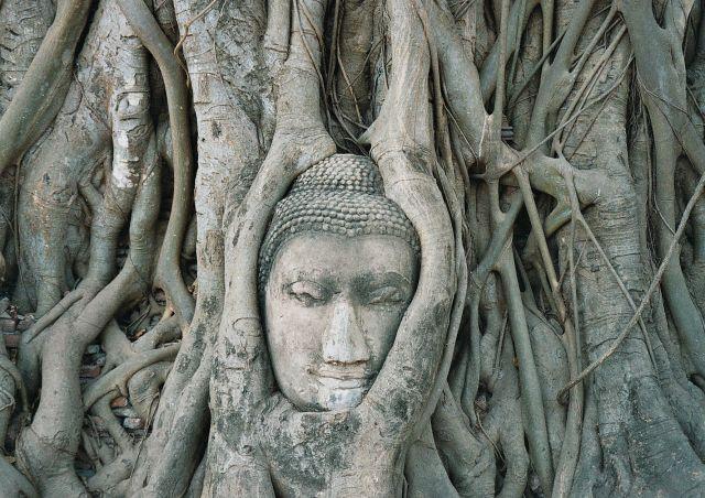 Zdjęcia: Ajutthaja, Ajutthaja, Budda, TAJLANDIA