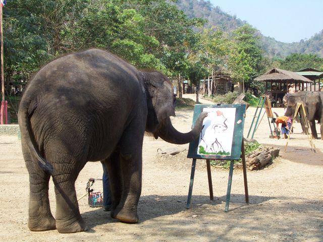 Zdjęcia: na północ od Chiang Mai, północ Tajlandii, artysta, TAJLANDIA