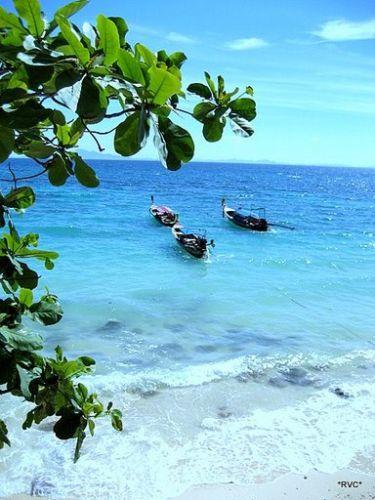 Zdjęcia: phi, wyspy phi phi, niebiańska plaża, TAJLANDIA