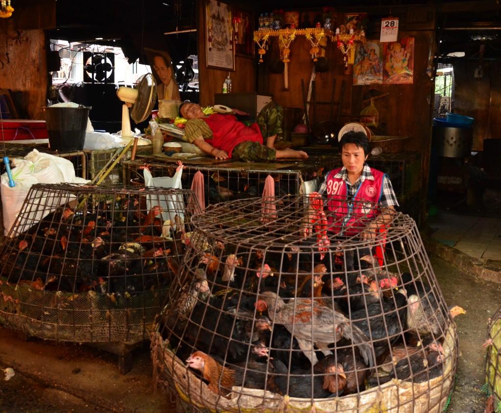 Zdjęcia: BKK, BKK, U sprzedawcy drobiu, TAJLANDIA