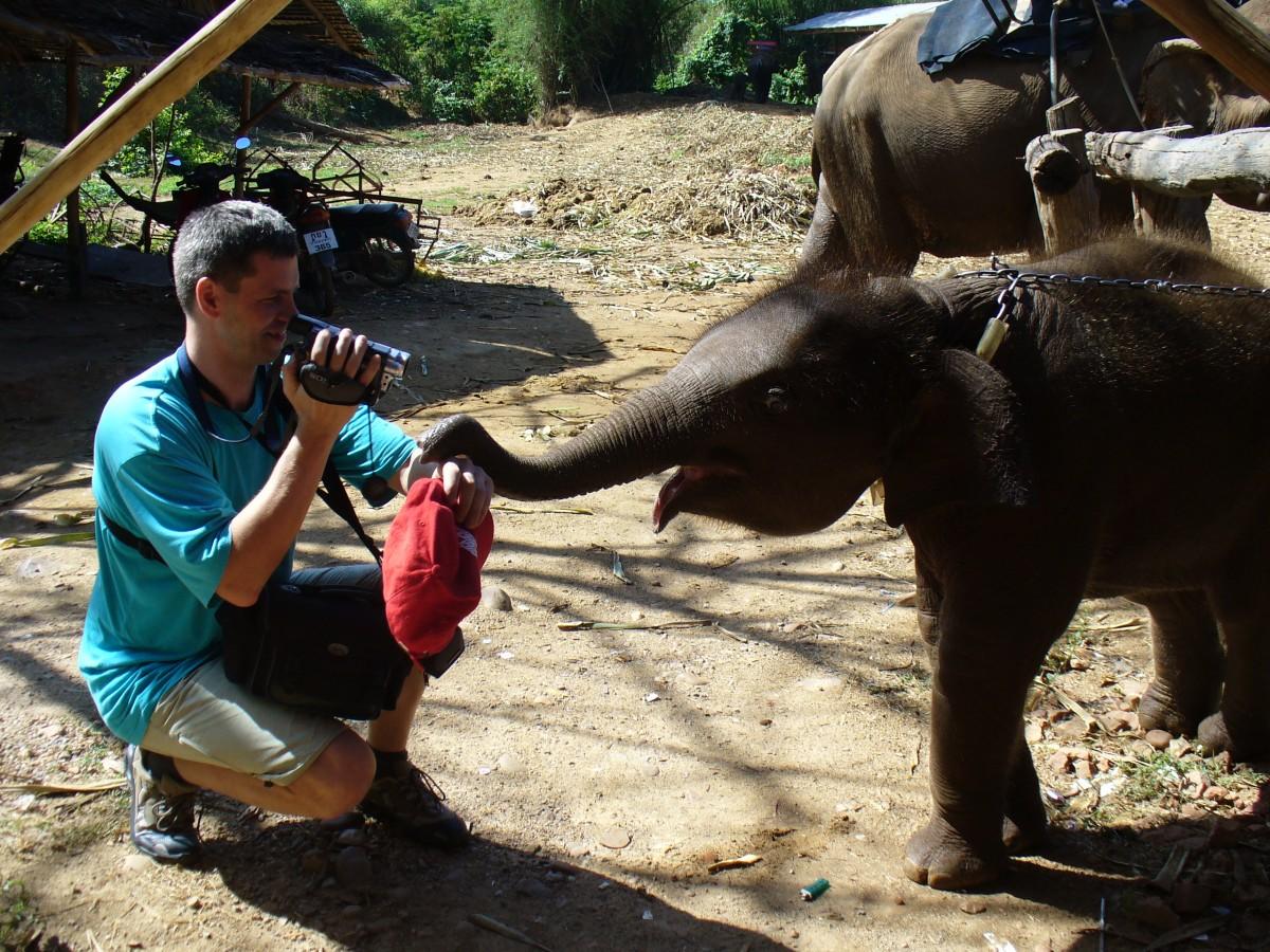 Zdjęcia: Farma słoni, Kanczanaburi, Kto jest bardziej ciekawski ? , TAJLANDIA