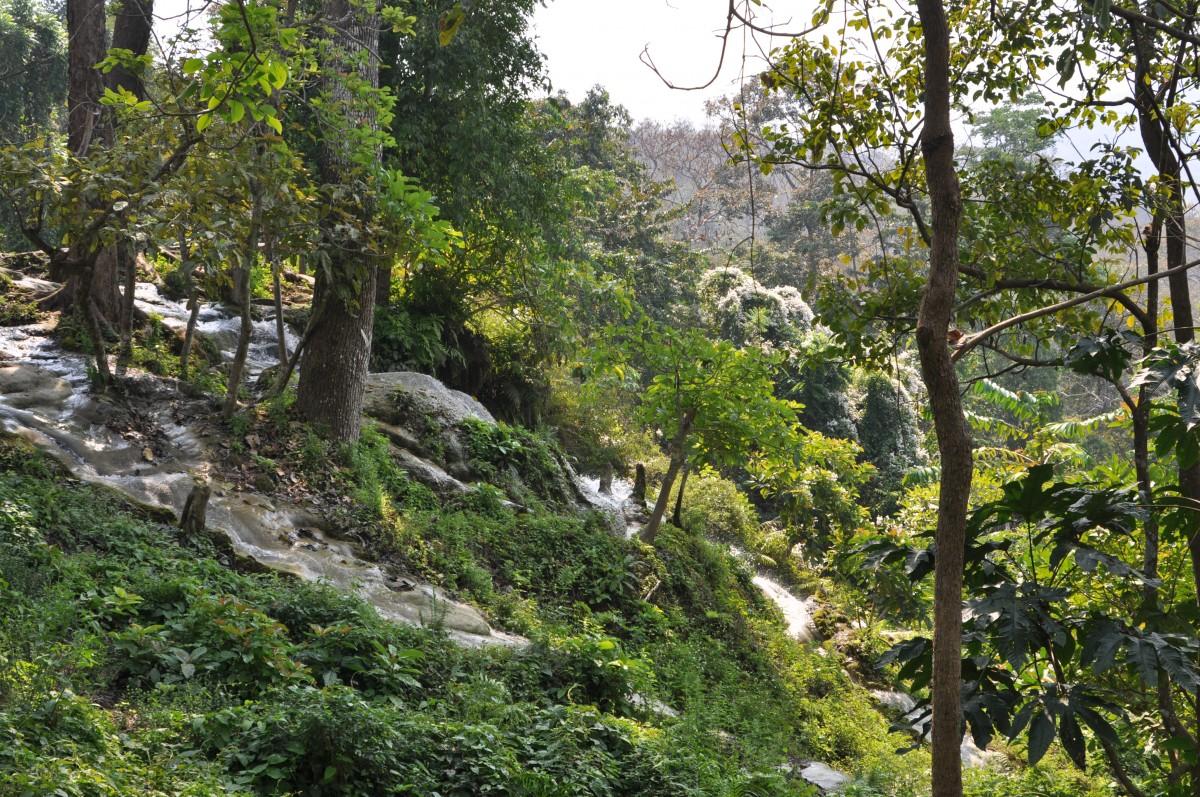Zdjęcia: na północ od Chiang Mai, północ , A strumyk płynie przez zielony las, TAJLANDIA