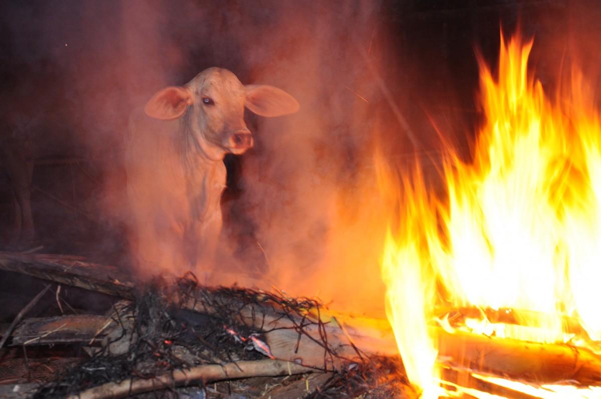 Zdjęcia: Nan, Nan, Przy ognisku...., TAJLANDIA
