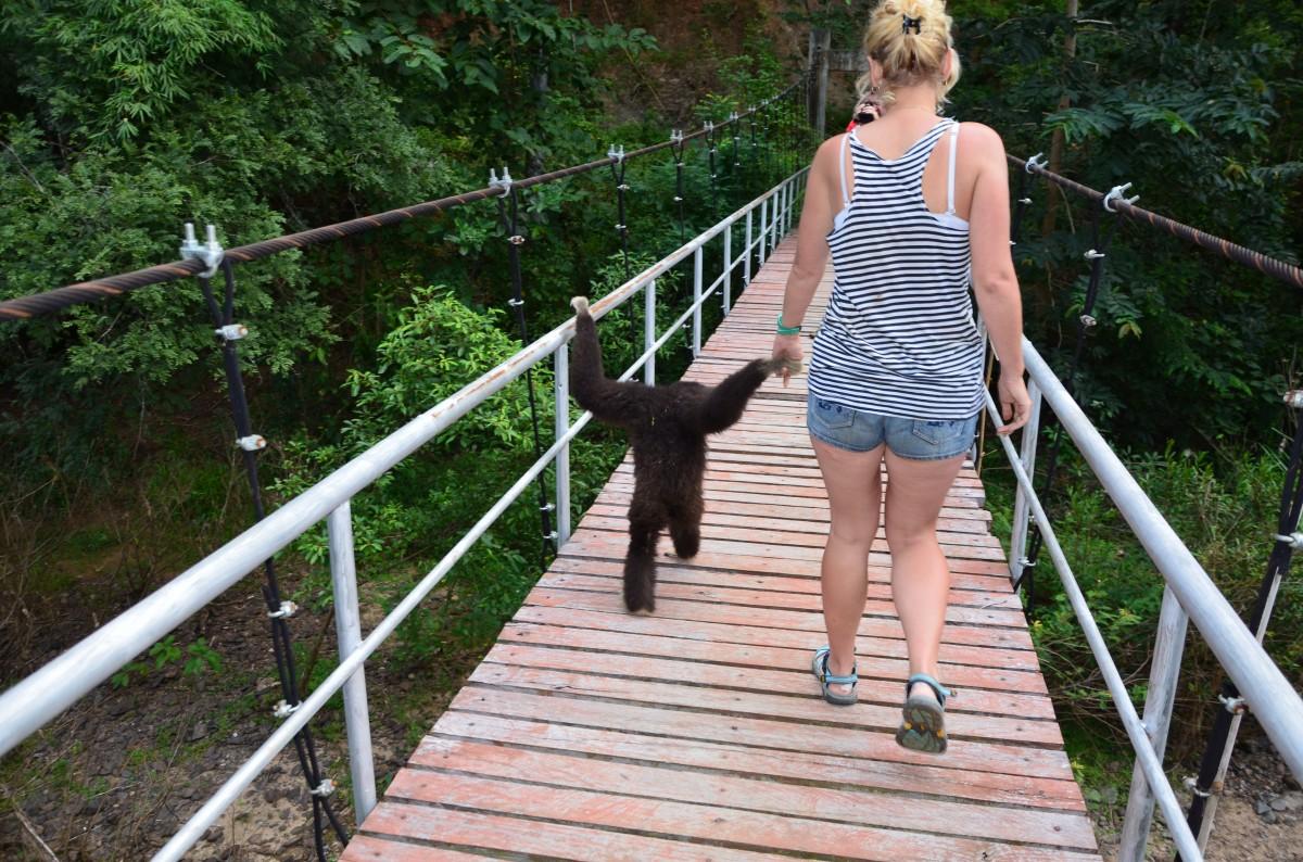 Zdjęcia: środek dżungli, Mae Hong Son, Lokalny przewodnik(Gibon Józek), TAJLANDIA