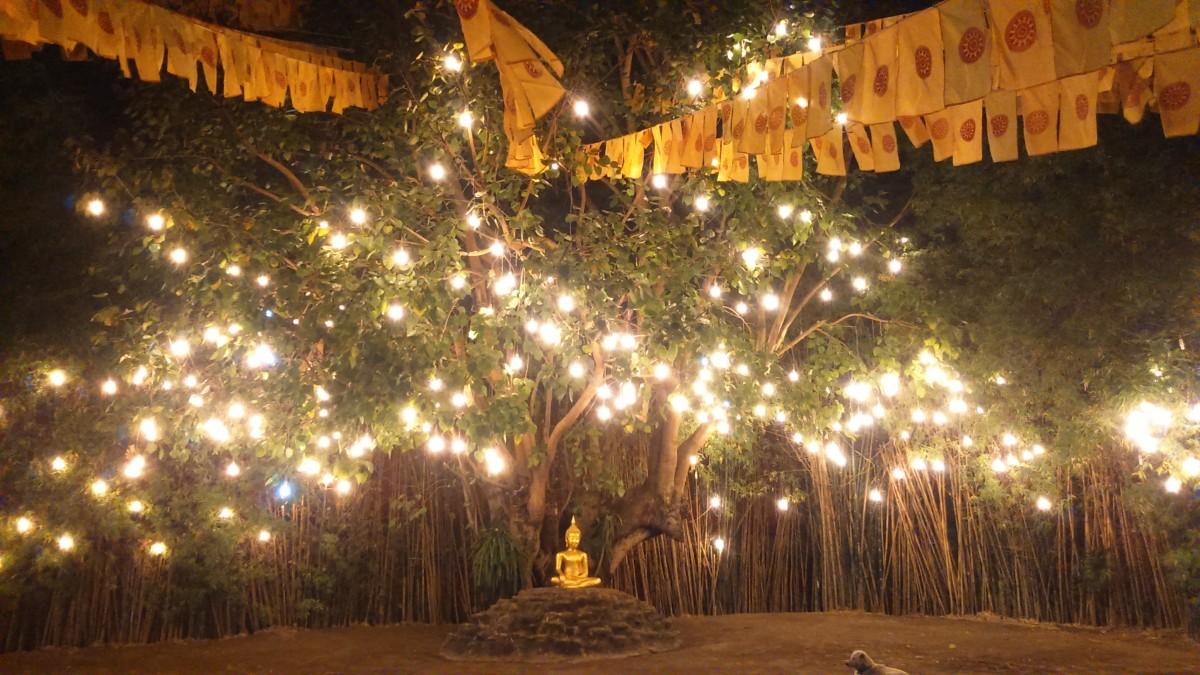 """Zdjęcia: chiang Mai, Azja, jedna ze świątyń buddyjskich """"by night"""", TAJLANDIA"""