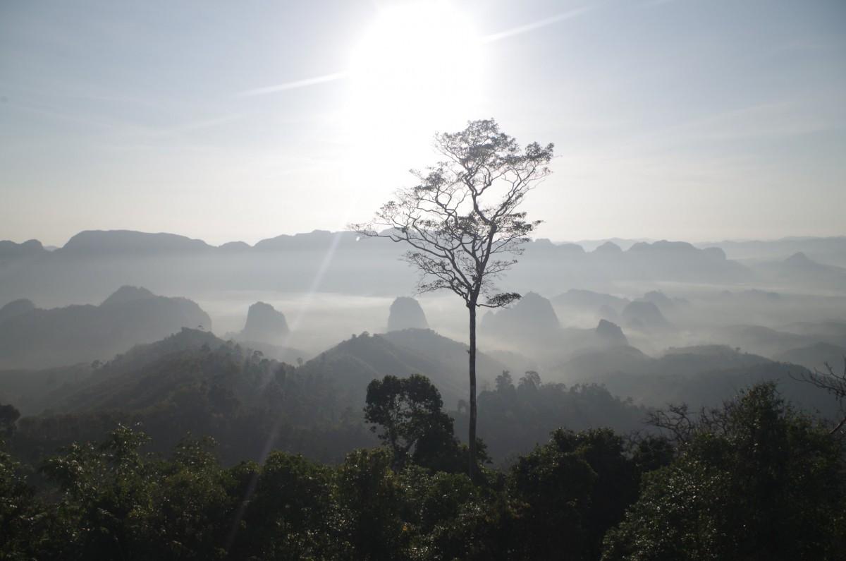 Zdjęcia: Doi Tapang Viewpoint, Tajlandia, Doi Tapang Viewpoint, TAJLANDIA