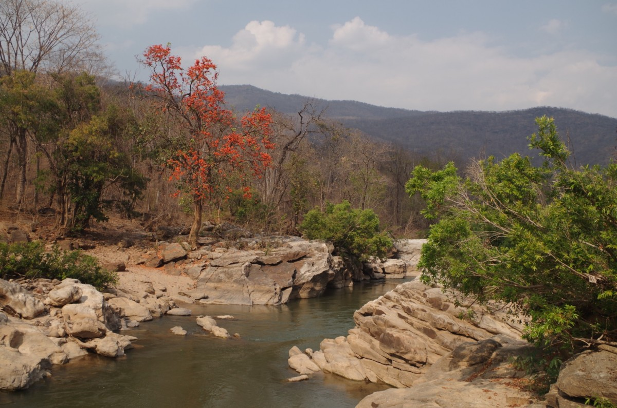 Zdjęcia: Op Luang National Park, prowincja Chiang Mai, Op Luang National Park, TAJLANDIA