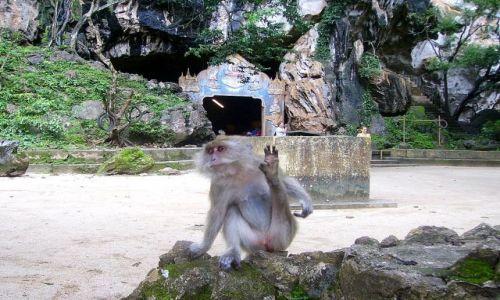 Zdjecie TAJLANDIA / południowa Tajlandia / jaskinia Monkey Cave Temple / dzisiaj w programie - rozciąganie!