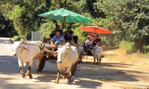 Zdjęcie TAJLANDIA / okolice Chiang Mai / okolice Chiang Mai / Prawie jak trojka....