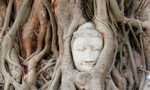 Zdjecie TAJLANDIA / Okolice Bangkoku /  Phra Nakhon Si Ayutthaya / Śpiący Budda