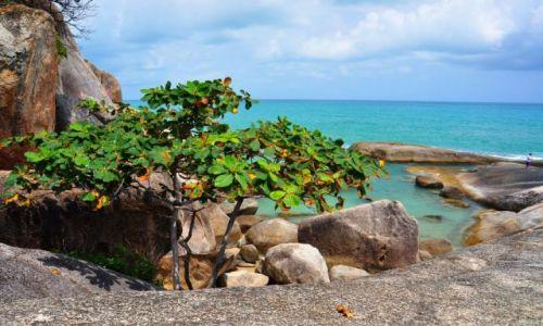 Zdjecie TAJLANDIA / Koh Samui / plaża / skałki