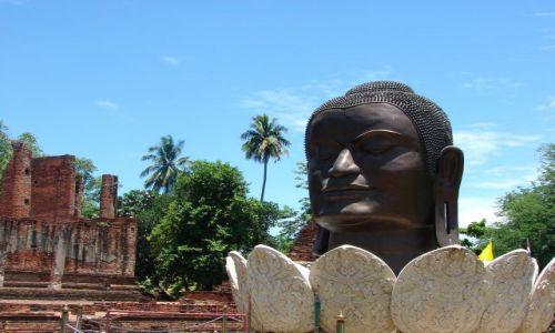 Zdjęcie TAJLANDIA / Ajuthaja / jedna ze świątyń / Swiątynia