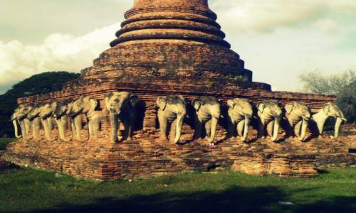 Zdjecie TAJLANDIA / Sukothai  / Historical Park  / słoń a jednak temple