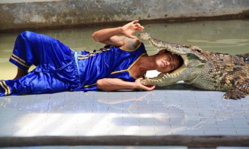 Zdjecie TAJLANDIA / - / Pattaya / Tajlandia