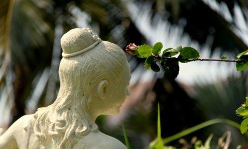 Zdjęcie TAJLANDIA / Koh Chang / Basen / Głowa