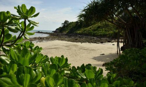 Zdjęcie TAJLANDIA / Krabi / Koh Lanta / Plaża