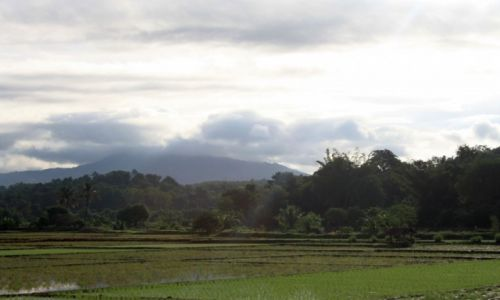 Zdjecie TAJLANDIA / Chiang Mai / Chiang Mai / W drodze do Chiang Mai