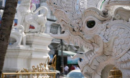 Zdjecie TAJLANDIA / - / Chiang Mai / Smok
