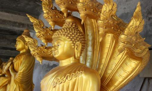 Zdjęcie TAJLANDIA / Phuket / Phuket / Buddha