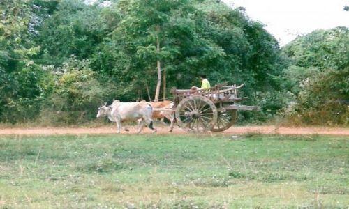 Zdjecie TAJLANDIA / Sukhothai / Stare Sukhothai / Transport