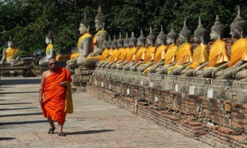 Zdjęcie TAJLANDIA / Ajutthaja / Wat Yai Chaya Mongkol / Budda powielony