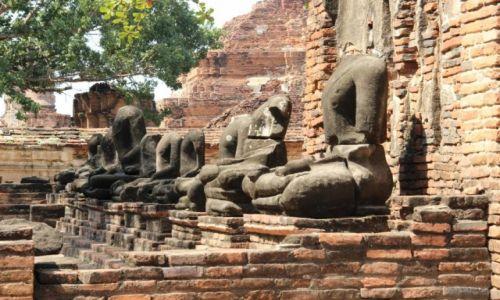 Zdjęcie TAJLANDIA / Ajutthaja / Wat Phra Mahthat / Zniszczone posągi Buddy w Wat Phra Mahthat