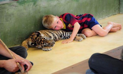 Zdj�cie TAJLANDIA / Prowincja Phuket / Phuket / Dziecko i Tygrysek