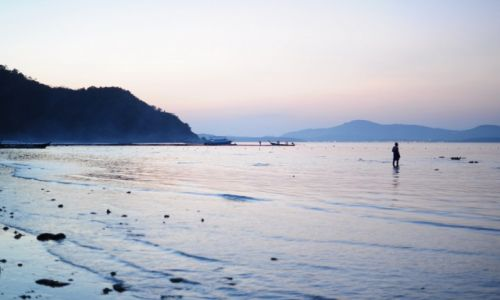 Zdj�cie TAJLANDIA / Prowincja Phuket / Phuket / Samotny....