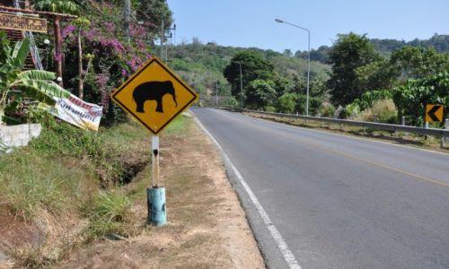 Zdj�cie TAJLANDIA / Prowincja Phuket / Phuket / Znak drogowy