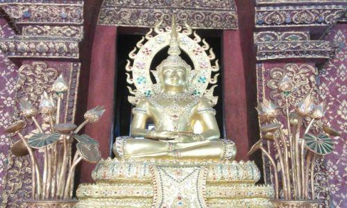 Zdjęcie TAJLANDIA / Chiang Mai / Chiang Mai / Złoty Budda