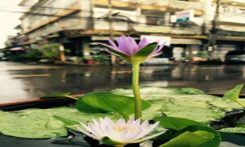 Zdjecie TAJLANDIA / Chumphon / Chumphon / Deszcz...