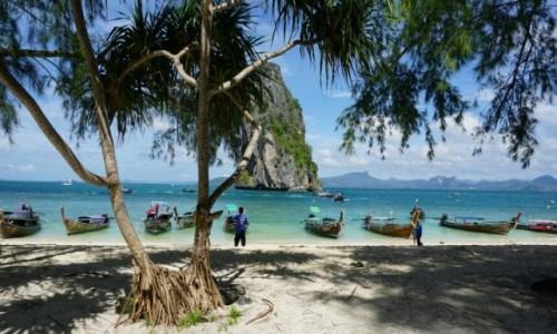 Zdjęcie TAJLANDIA / Krabi  / Ko poda / Ko poda