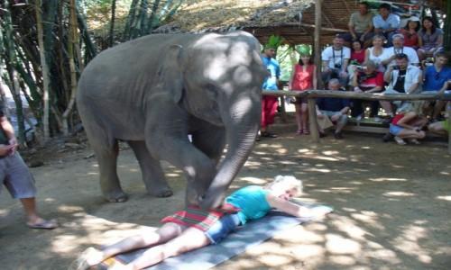 TAJLANDIA / Kanczanaburi / Farma słoni / Masaż tajski