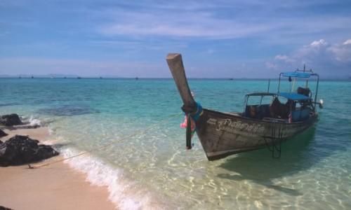Zdjecie TAJLANDIA / Phi Phi / Wyspy Phi Phi / Wyspy Phi Phi