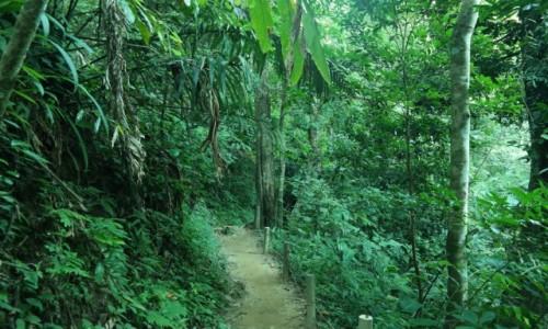 Zdjecie TAJLANDIA / Tajlandia Północna / วนอุทยานแห่ง&#3594 / Road from Chiang Mai to Chiang Rai