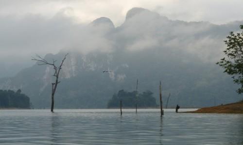 Zdjęcie TAJLANDIA / khao sok / dzungla / Taj raj