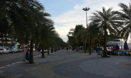 Zdjecie TAJLANDIA / - / Pattaya / Aleja palmowa w Pattaya