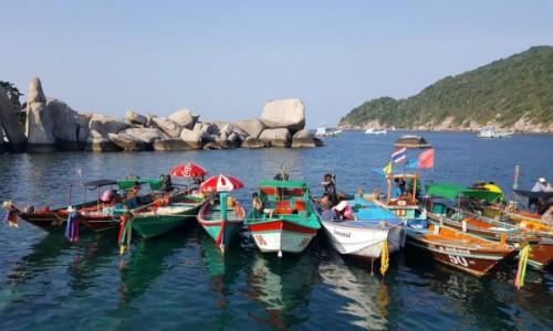 Zdjecie TAJLANDIA / - / Wyspa Kho Tao / Przystanek taxi :)