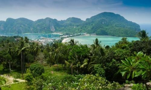 Zdjecie TAJLANDIA / Prowincja Krabi / Koh Phi Phi / Tajlandia