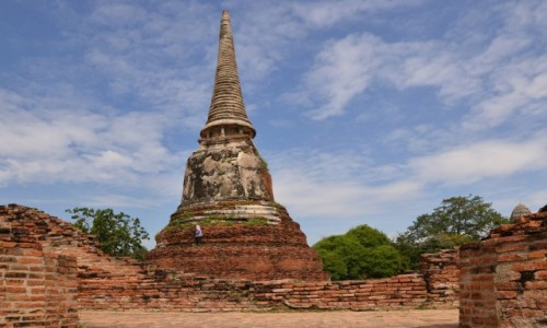 Zdjęcie TAJLANDIA / Ayutthaya  / Ayutthaya  / Kosiarka