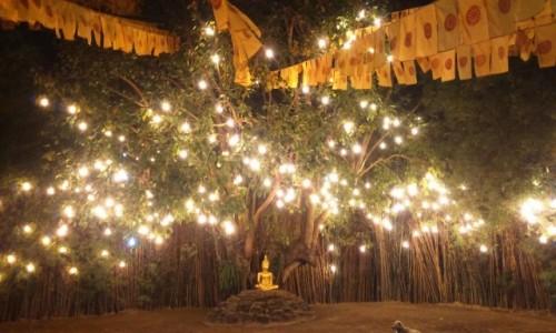 Zdjecie TAJLANDIA / Azja / chiang Mai / jedna ze świątyń buddyjskich