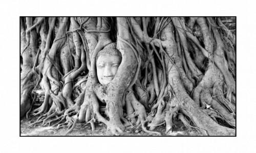 Zdjecie TAJLANDIA / Bangkok - okolice / Ajutthaja / Ukryta