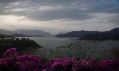 Zdjecie TAJLANDIA / prowincja Surat Thani / Ratchaprapha Dam / Ratchaprapha Dam