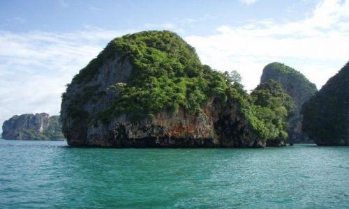 TAJLANDIA / Krabi / Krabi / rosną w wodzie
