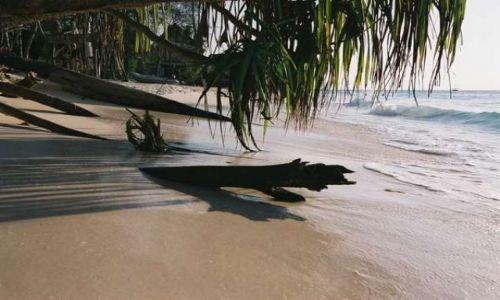Zdjecie TAJLANDIA / Zanzibar / Jambiani / Plaża tuż przed zachodem słońca