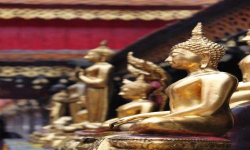 Zdjecie TAJLANDIA / Północna Tajlandia / Chiang Mai / w świątyni