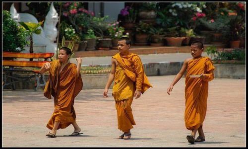 Zdjęcie TAJLANDIA / CHIANG MAI / WAT / Przyjaciele